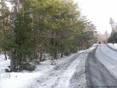 Greene County Residential Lots & Land For Sale: Elka Park Road