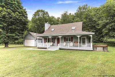 Greene County Single Family Home For Sale: 591 County Route 56