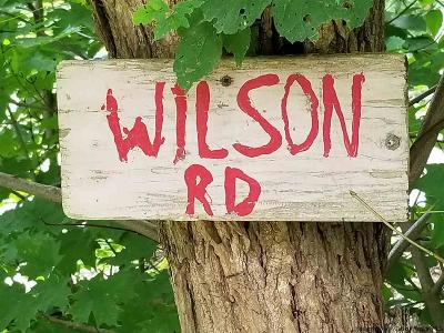 Greene County Residential Lots & Land For Sale: O Wilson Road