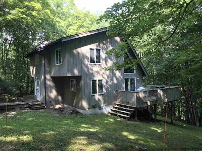 Roxbury Single Family Home For Sale: 70 Woodchuck Road