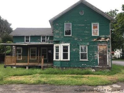 Greene County Single Family Home For Sale: 67 Railroad Ave