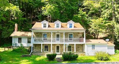 Stone Ridge Single Family Home For Sale: 420-428 Pine Bush Road