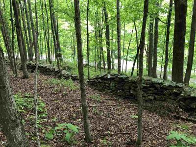 Delaware County Residential Lots & Land For Sale: Hidden Waters Drive