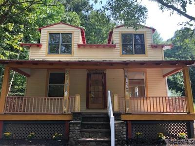 Phoenicia Single Family Home For Sale: 307 Old Route 28