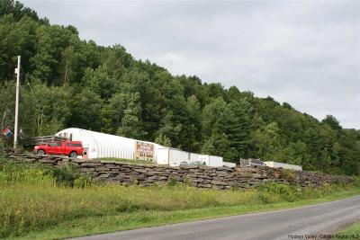 Greene County Commercial For Sale: 179 Old Route 28