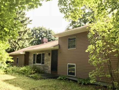 New Paltz Single Family Home For Sale: 62 Jenkinstown Road