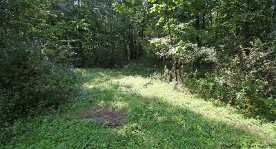 Delaware County Residential Lots & Land For Sale: Lower Highland Circle Circle