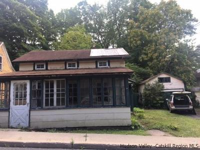 Ellenville Single Family Home For Sale: 205 Center Street