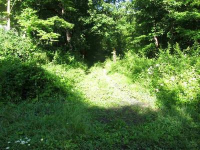 Kingston Residential Lots & Land For Sale: 860 Main Street