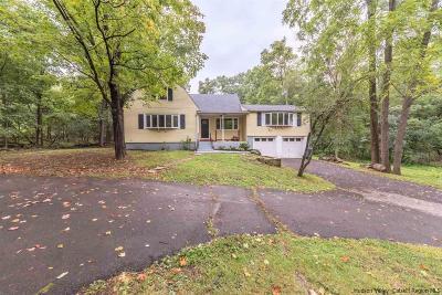 Rhinebeck Single Family Home For Sale: 349 Salisbury Turnpike