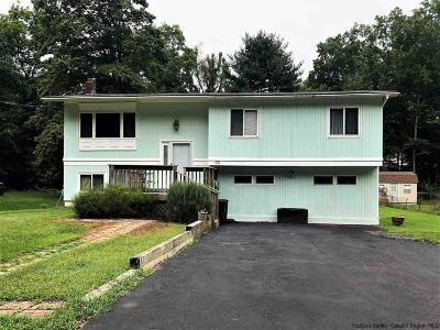 Cornwall On Hudson Single Family Home For Sale: 92 Boulevard