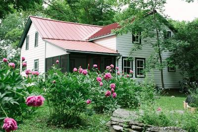 Ulster County Single Family Home For Sale: 53 Haver Rd
