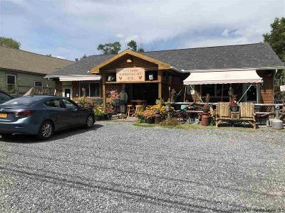 Delaware County Commercial For Sale: 43019-43021 Route 28