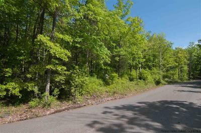 Pine Bush NY Residential Lots & Land For Sale: $75,000