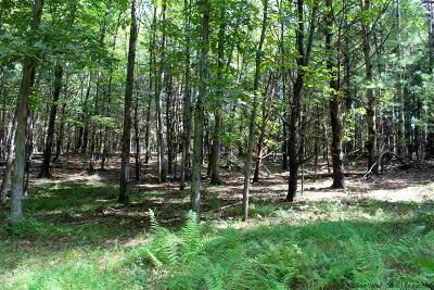 Saugerties Residential Lots & Land For Sale: Tbd3 Highwoods Road