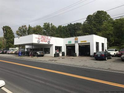 Ulster County Commercial For Sale: 8119 Route 209