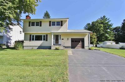 Saugerties Single Family Home For Sale: 15 Willow Road