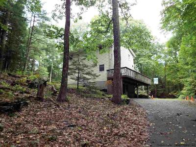 Saugerties Single Family Home For Sale: 36 Lodge Road
