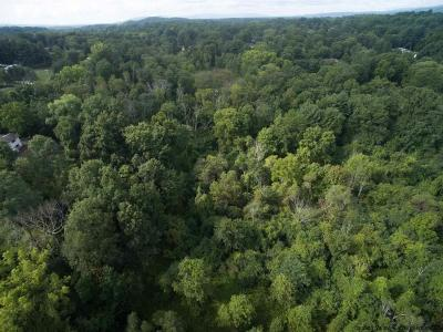Kingston Residential Lots & Land For Sale: 369-415 Pearl Street Extension