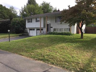 Saugerties Single Family Home For Sale: 54 Lamb Avenue