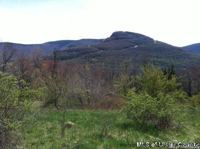 Greene County Residential Lots & Land For Sale: 12 Prince Drive