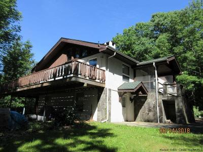 Ulster County Single Family Home For Sale: 47 Rose Mountain Road