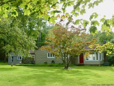 Woodstock Single Family Home For Sale: 150 Ohayo Mountain Road
