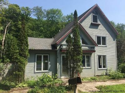 Shandaken Single Family Home For Sale: 576 Route 42