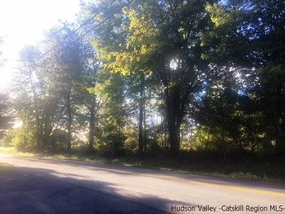 Commercial Lots & Land For Sale: Route 44/55