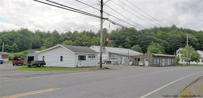 Greene County Commercial For Sale: 299 Main