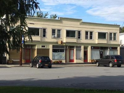 Ulster County Commercial For Sale: 323-331 Main Street