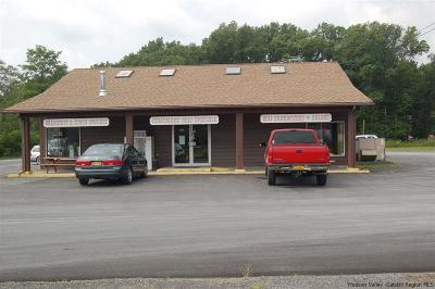 Saugerties Commercial For Sale: 963 Kings Highway