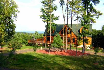 Kingston Single Family Home For Sale: 251 East Ridge Drive
