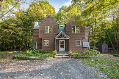 Ulster County Single Family Home For Sale: 7 Adrienne Lane