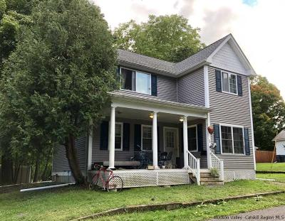 New Paltz Single Family Home For Sale: 48 John Street