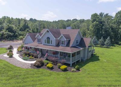 Ulster County Single Family Home For Sale: 85 Forest Road