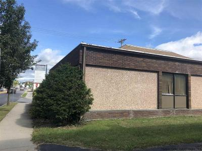 Ulster County Commercial For Sale: 124 S Main Street