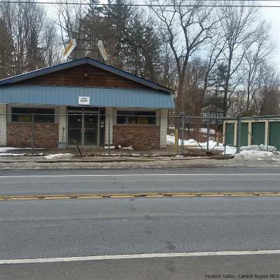Commercial For Sale: 2546 Route 32