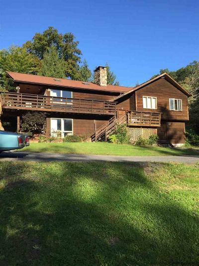 Ulster County Single Family Home For Sale: 1357 Wittenberg Rd