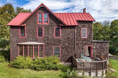 Ulster County Single Family Home For Sale: 156 Henry