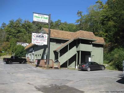 Kingston Commercial For Sale: 580-620 Route 28
