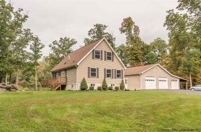 Catskill Single Family Home For Sale: 225 Paradise Lake Road