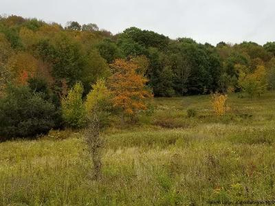 Delaware County Residential Lots & Land Back On Market: Scudder Hill Road