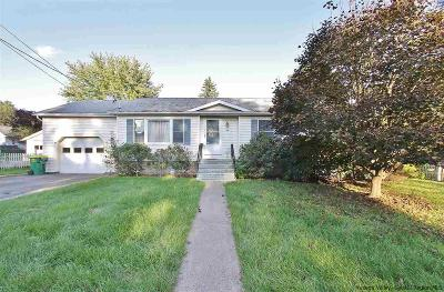 Ulster County Single Family Home For Sale: 44 Catskill Avenue