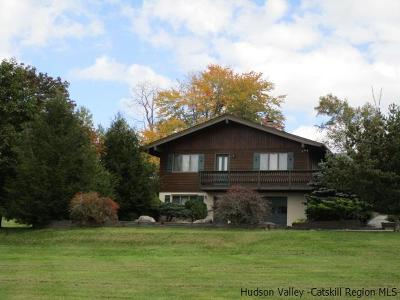 Greene County Single Family Home For Sale: 7 Windham View Road