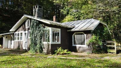 Woodstock NY Single Family Home Pending Continue To Show: $359,000