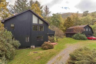 Ulster County Single Family Home For Sale: 176 Silver Hollow Road