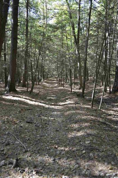 Residential Lots & Land For Sale: Lot # 5 Powder Mill Rd