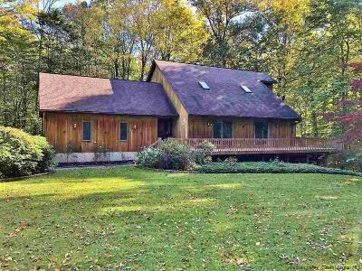Pine Bush Single Family Home For Sale: 94 Crans Mill Road