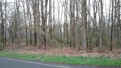Residential Lots & Land For Sale: Springtown Road